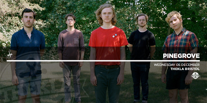 700 Website Pinegrove