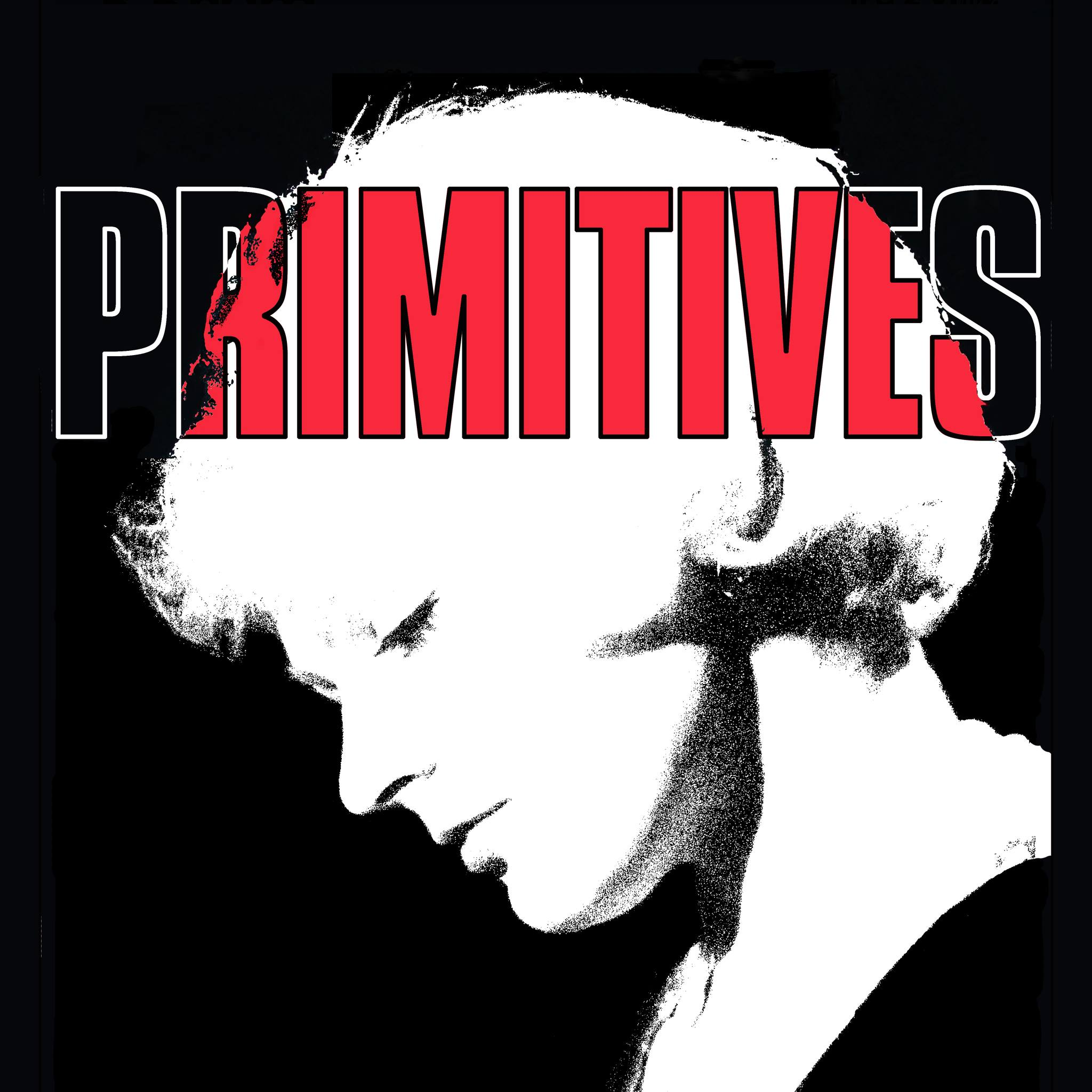 Picture of The Primitives